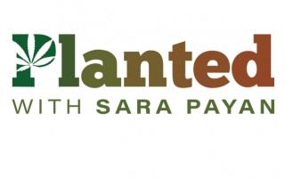 Planted with Sara Payan