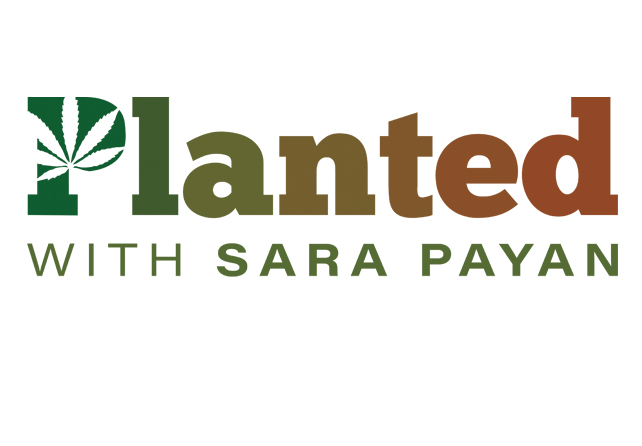 Planted with Sara Payan